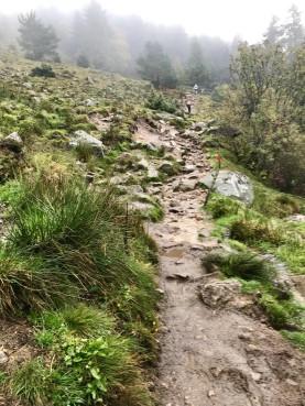 Munster trail 4